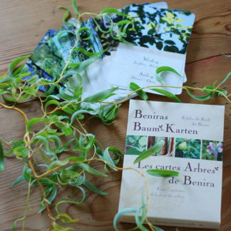 Beniras Baum-Karten
